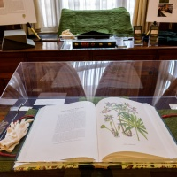 'The Transylvania Florilegium': exhibition and book